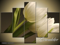 Obraz na zeď-květy- 5D F000405