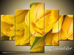 Obraz na zeď-květy- 5D F000410