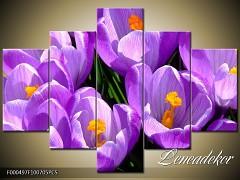 Obraz na zeď-květy- 5D F000497