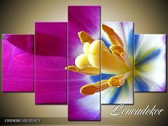 Obraz na zeď-květy- 5D F000498