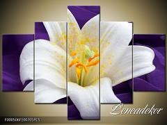 Obraz na zeď-květy- 5D F000506