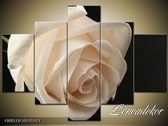 Obraz na zeď-květy- 5D F000533
