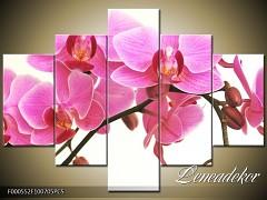 Obraz na zeď-květy- 5D F000552