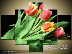 Obraz na zeď-květy- 5D F000560