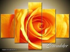 Obraz na zeď-květy- 5D F000573