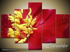 Obraz na zeď-květy- 5D F000599