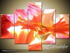 Obraz na zeď-květy- 5D F000636