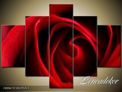 Obraz na zeď-květy- 5D F000671