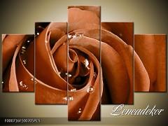 Obraz na zeď-květy- 5D F000716