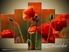 Obraz na zeď-květy- 5D F000893