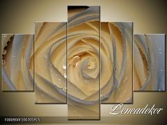 Obraz na zeď-květy- 5D F000900