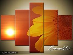 Obraz na zeď-květy- 5D F000943
