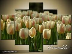 Obraz na zeď-květy- 5D F000946