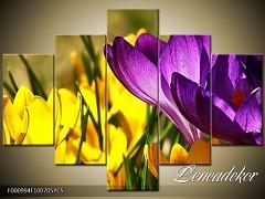 Obraz na zeď-květy- 5D F000994