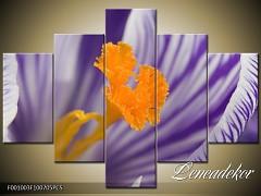 Obraz na zeď-květy- 5D F001003