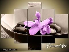 Obraz na zeď-květy- 5D F004520