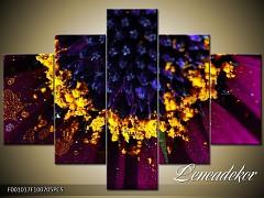 Obraz na zeď-květy- 5D F001017