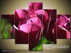 Obraz na zeď-květy- 5D F001021