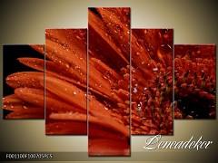 Obraz na zeď-květy- 5D F001100