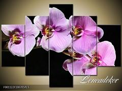Obraz na zeď-květy- 5D F001122