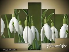Obraz na zeď-květy- 5D F001126