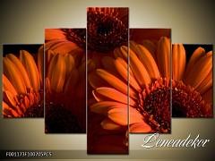 Obraz na zeď-květy- 5D F001173