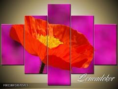 Obraz na zeď-květy- 5D F001180