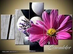 Obraz na zeď-květy- 5D F001194