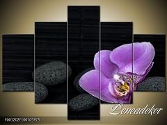 Obraz na zeď-květy- 5D F001202