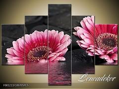 Obraz na zeď-květy- 5D F001211
