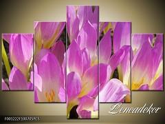 Obraz na zeď-květy- 5D F001222