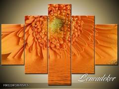 Obraz na zeď-květy- 5D F001224