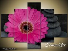 Obraz na zeď-květy- 5D F001225