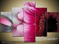 Obraz na zeď-květy- 5D F001226