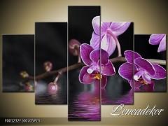 Obraz na zeď-květy- 5D F001232