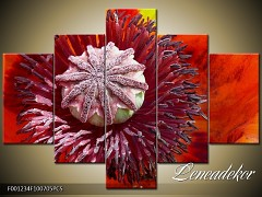 Obraz na zeď-květy- 5D F001234