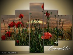 Obraz na zeď-květy- 5D F001413