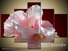 Obraz na zeď-květy- 5D F001420