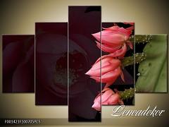 Obraz na zeď-květy- 5D F001421