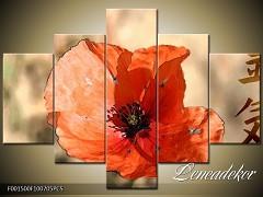 Obraz na zeď-květy- 5D F001500