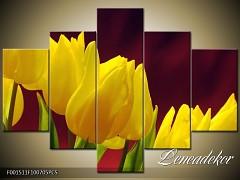 Obraz na zeď-květy- 5D F001511