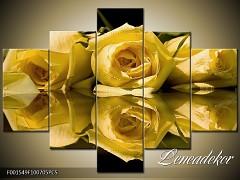 Obraz na zeď-květy- 5D F001549
