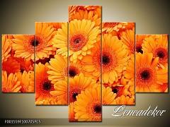 Obraz na zeď-květy- 5D F001559