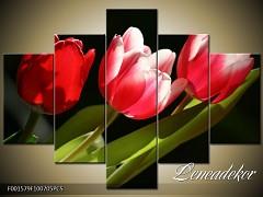 Obraz na zeď-květy- 5D F001579