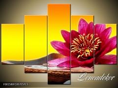 Obraz na zeď-květy- 5D F001580