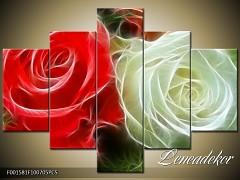 Obraz na zeď-květy- 5D F001581