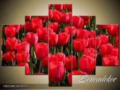 Obraz na zeď-květy- 5D F001598