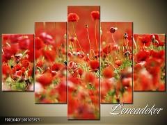 Obraz na zeď-květy- 5D F001640
