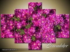 Obraz na zeď-květy- 5D F001647