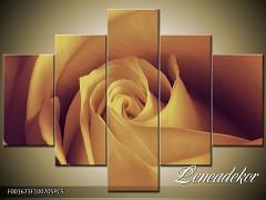 Obraz na zeď-květy- 5D F001673